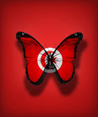 Tunisian flag butterfly, isolated on flag background — Stock Photo
