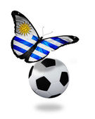 Concept - butterfly with Uruguay flag flying near the ball, like — Foto de Stock