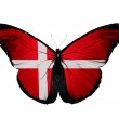 Denmark flag butterfly, isolated on white background — Stock Photo