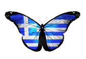Greece flag butterfly, isolated on white background — Stock Photo