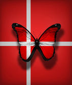 Denmark flag butterfly, isolated on flag background — Stock Photo