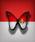 Monaco flag butterfly, isolated on flag background — Stock Photo