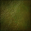 Green leather texture, abstract background — Stock Photo