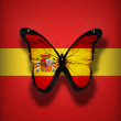Spanish flag butterfly, isolated on flag background — Stock Photo #18497897