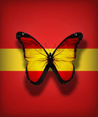 Spanish flag butterfly, isolated on flag background — Stock Photo