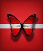 Motyl flaga łotwy, na białym tle flaga — Zdjęcie stockowe