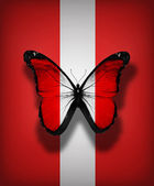 Peru flag butterfly, isolated on flag background — Stock Photo