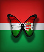 Hungarian flag butterfly, isolated on flag background — Stock Photo