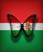 Mariposa bandera húngara, aislado en el fondo de la bandera — Foto de Stock