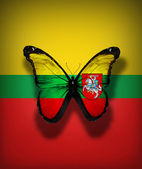 Lithuanian flag butterfly with Coat of arms, isolated on flag background — Stock Photo
