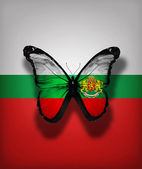 Bulgarian flag butterfly with Coat of arms , isolated on flag background — Stock Photo