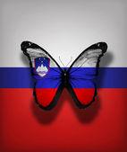 Borboleta de bandeira eslovena, isolada no fundo da bandeira — Fotografia Stock