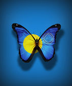 Palau flag butterfly with coat of arms, isolated on flag background — Stock Photo