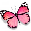Pink butterfly, isolated on white background - Stock Photo
