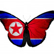 North Korea flag butterfly, isolated on white background — Stock Photo #20908161