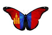 Mongolian flag butterfly flying, isolated on white background — Stock Photo