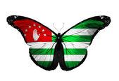Abchazien flagga fjäril flyger, isolerade på vit bakgrund — Stockfoto