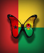 Guinea-Bissau flag butterfly, isolated on flag background — Stock Photo