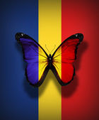 Romanian flag butterfly, isolated on flag background — Stock Photo