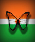 Niger flag butterfly, isolated on flag background — Foto de Stock