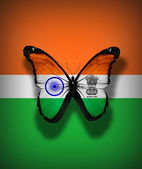 Indian flag butterfly, isolated on flag background — Stock Photo