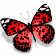 Stock Photo: Red butterfly, isolated on white background