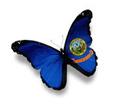 Flag of Idaho butterfly, isolated on white — Stock Photo