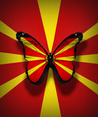 Macedonian flag butterfly, isolated on flag background — Stock Photo