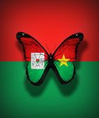 Burkina Faso flag butterfly, isolated on flag background — Stock Photo