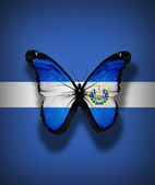 El Salvador flag butterfly, isolated on flag background — Stock Photo