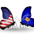 Stock Photo: Two butterflies with flags on wings as symbol of relations USand Kosovo