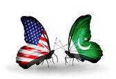 Due farfalle con bandiere sulle ali come simbolo delle relazioni usa e pakistan — Foto Stock