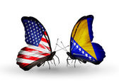 Two butterflies with flags on wings as symbol of relations USA and Bosnia and Herzegovina — Stock Photo