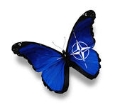 Flag of NATO butterfly, isolated on white — Stock Photo