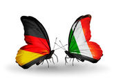 两个蝴蝶翅膀上的标志与象征的关系作为德国和爱尔兰 — 图库照片