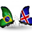 Two butterflies with flags on wings as symbol of relations Brazil and Iceland — 图库照片
