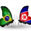 Two butterflies with flags on wings as symbol of relations Brazil and North Korea — Stock Photo