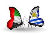 Iki kelebek kanatları ilişkileri Bae ve uruguay sembolü olarak bayrakları ile — Stok fotoğraf
