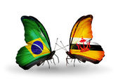 Two butterflies with flags on wings as symbol of relations Brazil and Brunei — Stock Photo