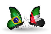 Two butterflies with flags on wings as symbol of relations Brazil and UAE — Stock Photo