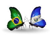 Due farfalle con bandiere sulle ali come simbolo delle relazioni, brasile e salvador — Foto Stock