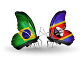 Two butterflies with flags on wings as symbol of relations Brazil and Swaziland — Stock Photo