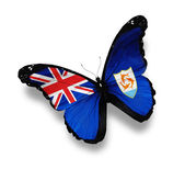 Flag of Anguilla butterfly, isolated on white — Stock Photo