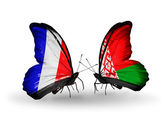 Two butterflies with flags on wings as symbol of relations France and Belarus — ストック写真