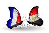 Två fjärilar med flaggor på vingarna som symbol för förbindelserna mellan frankrike och egypten — Stockfoto