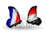 Two butterflies with flags on wings as symbol of relations France and Yemen — Foto de Stock