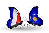 Två fjärilar med flaggor på vingarna som symbol för förbindelserna mellan frankrike och kosovo — Stockfoto