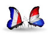 Two butterflies with flags on wings as symbol of relations France and Luxembourg — Stock Photo