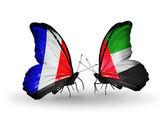 Två fjärilar med flaggor på vingarna som symbol för förbindelserna mellan frankrike och förenade arabemiraten — Stockfoto