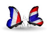 Två fjärilar med flaggor på vingarna som symbol för förbindelserna mellan frankrike och thailand — Stockfoto